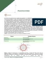 4-Paramixoviridae-enviar3.pdf