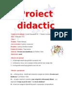 proiect_lectura_grad.doc