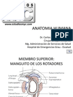 ANATOMIA-HUMANA-EstudiosMyC.pdf