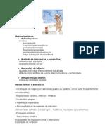 SINTESE ORTONIMO.docx