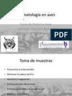 Hematología en aves.pdf
