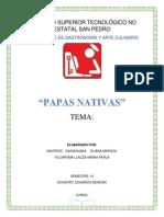PAPA NATIVA.docx