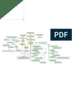 6 Mapa comcpetual final.pdf