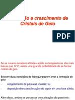 Capitulo 6 - Formação e crescimento de Cristais de Gelo - 2014.pdf