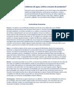 Datos de algunas Culturas del Perú.docx