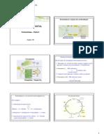 Aula 9 - Fotossíntese- parte II.pdf
