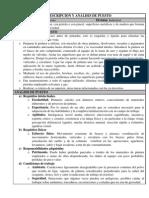Descripción y análisis de puesto.docx