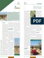 Cultivo del pistacho.pdf