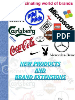 brandextension-120306010044-phpapp01
