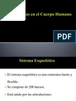 sistemas del cuerpo humano.ppt