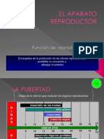 EL_APARATO_REPRODUCTOR (1).ppt