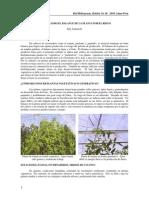 48_balance_riego.pdf