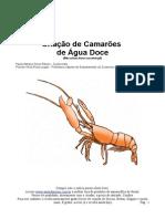 CriacaodeCamaroes.pdf