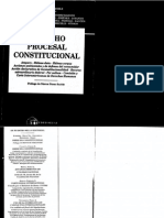 PROCESAL PUBLICO - Derecho-Procesal-Constitucional-Pablo-Luis-Manili-.pdf