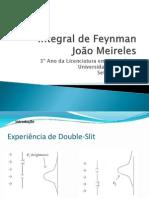 Integral_de_Feynman.pdf