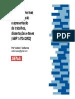 Normas pa.. (1).pdf