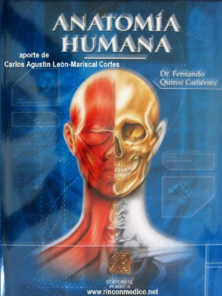 Anatomia Cromodinamica Wynn Kapit
