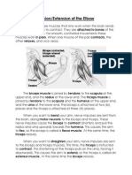 flexion-extension of the elbow notes for class website