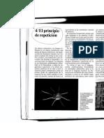 libro musica signo2.pdf