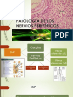 PATOLOGÍA DE LOS NERVIOS PERIFÉRICOS.pptx