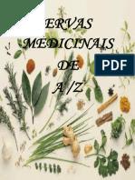 ervasmedicinaistrab-grupo-110329163851-phpapp01.docx