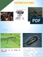 3 F II HIDROST.pdf