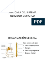 Sistema Nervioso Simpático (Anatomía).pptx