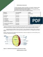 Resumen Andinos II.docx
