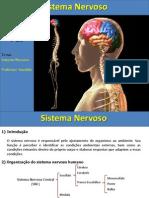 Aula Sistema Nervoso.ppt