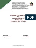 TRABAJO INAMOBILIDAD LABORAL.docx