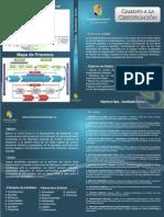 20120322_INSTITUCIONAL_CALIDAD-FOLLETODIC2011.pdf