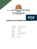 TPI de IONOMEROS 1.docx