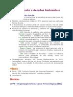 Meio Ambiente e Acordos Ambientais.doc