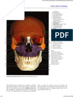Color Atlas of Anatomy - Page 027 _ Facial Bones.pdf