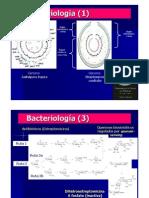 14_Bacter-10-Oct-11.pdf