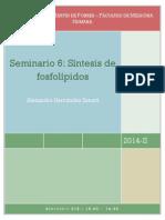 SEMINARIO 6 - SINTESIS DE FOSFOLIPIDOS.pdf