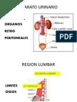 6. SEMIOLOGIA REGION LUMBAR.pptx