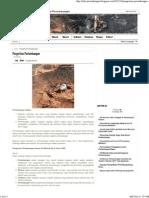 Pengertian Pertambangan _ Pertambangan.pdf