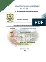 INDICADORES DE SOSTENIBILIDAD TRABAJO.docx