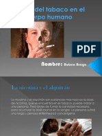 power point de ruben araya jimenez.pptx