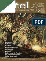 STE Revista Estel 075 Otoño 2012
