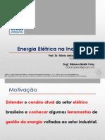 Energia Elétrica na Indústria - Introdução.pdf