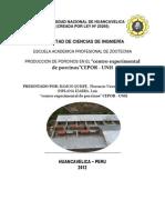 UNIVERSIDAD NACIONAL DE HUANCAVELICA( INFORME DE PRACTICAS PRE).docx