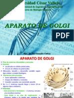 Tema 11. APARATO DE GOLGI - Dr. GONZALEZ CABEZA.ppt