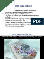15 Metabolismo dos Triacilglicerois.ppt