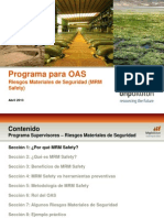 870 Riesgos Materiales BHP.pdf