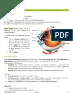 Tema 1 Bases anatomofisiologicas. Tema 1.1. Anatomofisiología del globo ocular..docx