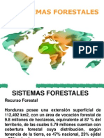 SISTEMAS FORESTALES.ppt