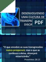 DESENVOLVENDO TRANSPARENCIA.ppt