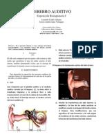 CortezaCerebral_auditivo_ieee.pdf